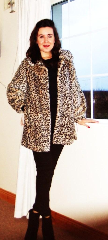 leopard 013
